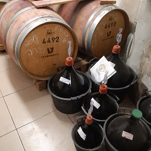 Rogalit Winery - in the celler