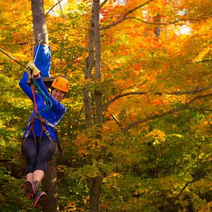 Camp Fortune Aerial Park and Ziplines