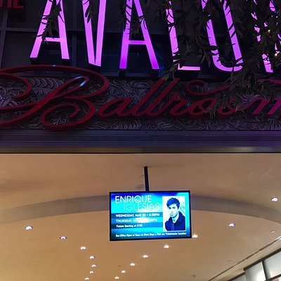 View of marquee and lobby, waiting for meet and greet, photos near stage and catwalk, meet and greet