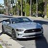 VIP Mustang Tours