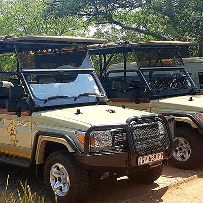 Tambuzi Safaris