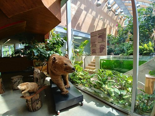 Various nature-related exhibitions in the lobby