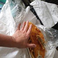 Very large haddock