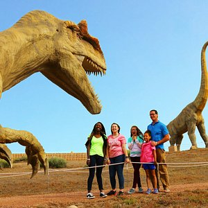 Come experience our moving and roaring life-like animatronic dinosaurs on our Dinosaur Wild Walk, a 1/8 mile trial that trail where you can explore our prehistoric past.