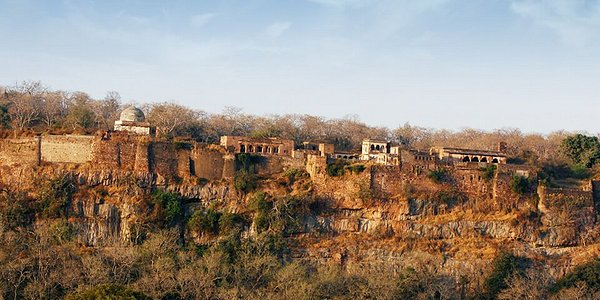 RANTHAMBORE FORT The noteworthy Ranthambore Fort was built by the Chauhan rulers in the 10th century. Due to its strategic location, it was ideal to keep the enemy at bay. The fort is also related to the historical legend of the royal women performing 'jauhar' (self-immolation) when the Muslim invader Alauddin Khilji laid siege on this fort in 1303. The fort is characterised by temples, tanks, massive gates and huge walls.