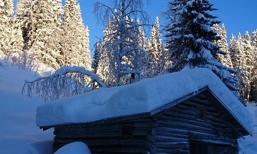 In our woodstove sauna you can relax after a fantastic dogsledding tour