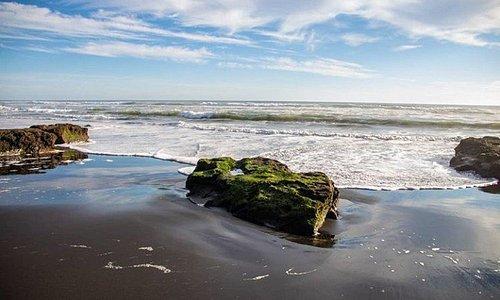 Tour por la zona costera,  turismo de intereses especiales, 2 días 1 noche, disfruta esta maravillosa experiencia!!..