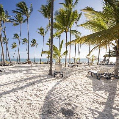 Лучшая экскурсия на остров Саона в Доминиканской республике от Чао Какао Тур. Когда Вы сами приезжаете в пункт отправления в Байяибе, Вы получаете лучшую цену $35. Мы вышлем Вам геопозицию и контакт встречающего лица. В том случае, когда мы осуществляем трансфер из Вашего отеля в Пунта Кане, Байяибе, Ла Романа, лучшая цена для Вас составляет $45. Индивидуальная экскурсия на лодке до 15 человек составляет $95 за человека. Саона VIP - это когда едет только Ваша группа от 1 человека.