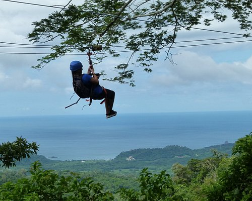 Amazing Ocean Views from the Canopy Tour / Zipline Tour
