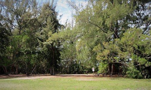 South Lido Park