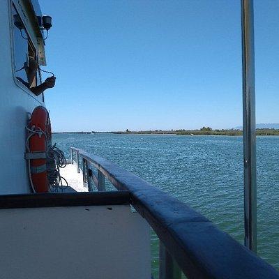 Boat trip on the Ebro