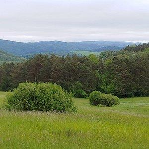 Jaśliski Park Krajobrazowy