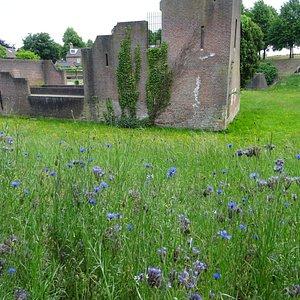 kasteel Heusden