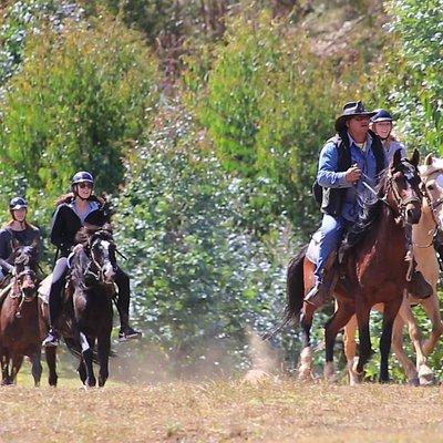 www.horsebackriding.com.pe