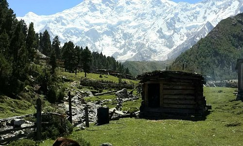 Fairy meadows, Gilgit Baltistan, Pakistan is a beautiful point where the Himalayas, the Karakoram and Hindu Kush mountain ranges meet.