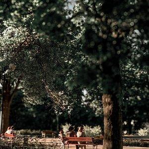 Stary Ogrod Park