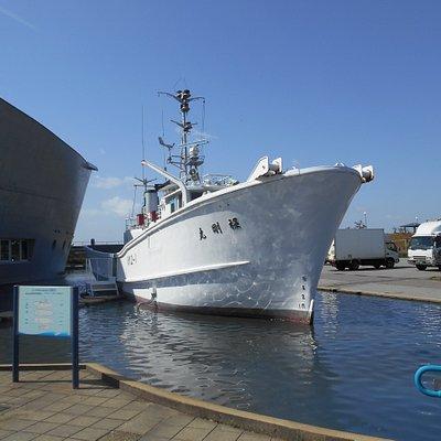 うみとさかなの科学館(石川県海洋漁業博物館)