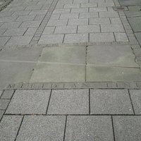 The line in the pavement