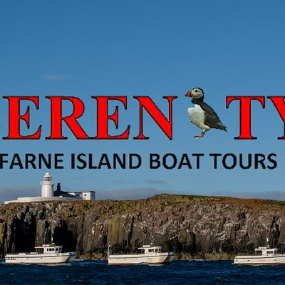 Serenity Farne Island Boat Tours Sailing all year offering different types of trips throughout all the seasons.