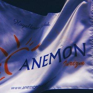 Anemon Tour