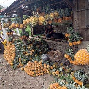 Belanja nanas madu di jalan utama pemalang - purbalingga