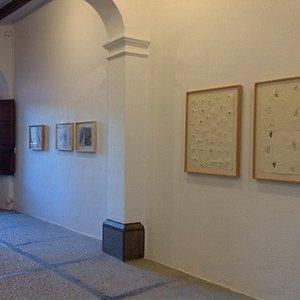 exhibition Toni de Cuber