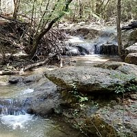 Nice cascades on Canyon creek