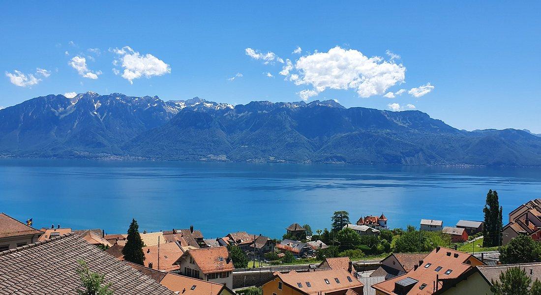 Nice view from Chexbres in Switzerland 🇨🇭 ! Belle vue depuis le Lavaux à Chexbres en Suisse ! Che bel paesaggio in Chexbres vediamo ! Schöne Aussicht in Chexbres !