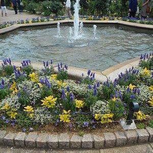 花壇中央の噴水