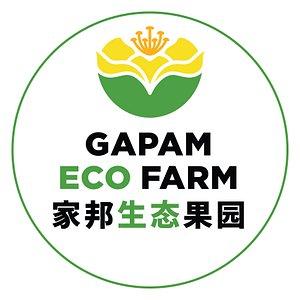 Gapam Eco Farm