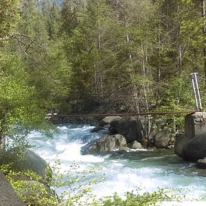 Swinging Bridge in June