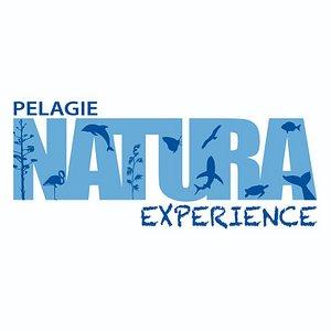 Pelagie Natura Experence è il progetto di ecoturismo sviluppato alle Isole Pelagie che ha l'obiettivo di far conoscere i valori naturalistici dell'Arcipelago ed accompagnare l'escursionista in un percorso di conoscenza delle specie marine protette quali delfini e tartarughe e le minacce a cui sono sottoposte,