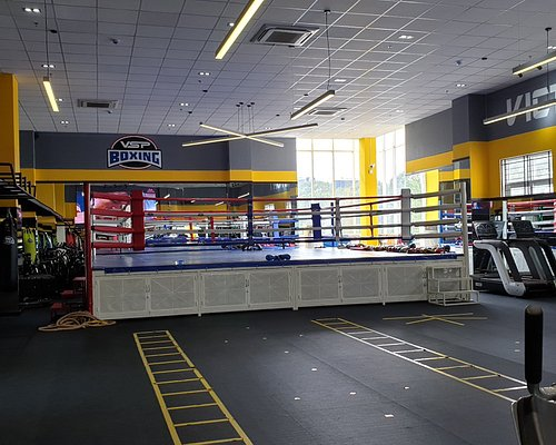 Olympic size boxing ring in the gym