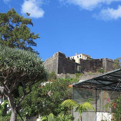 Museo Quinta das Cruzes