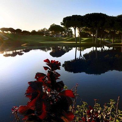 Amanece en Cabolpino Golf Marbella