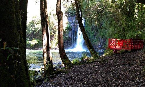 Una caminata a través del bosque te lleva a refrescarte a una paradisíaca cascada