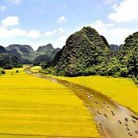 tam coc lavender homestay near view