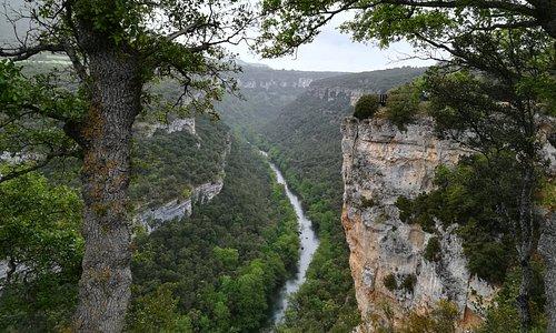 Cañones del Alto Ebro, territorio de rapaces
