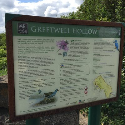 Greetwell Hollow Nature Reserve Lincoln