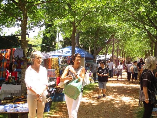The lovely avenue of trees shading the market stalls