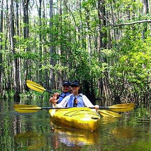 Kayaking in the Cypress Swamp