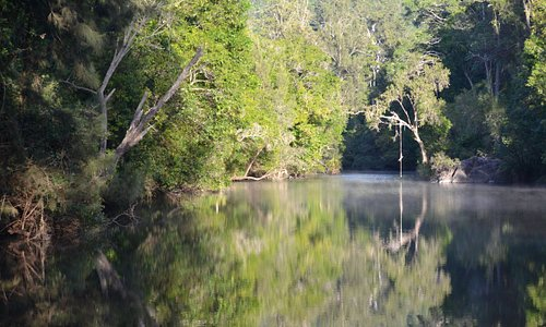 Yabba Creek runs alongside the campgrounds and is a short walk down from the campgrounds.
