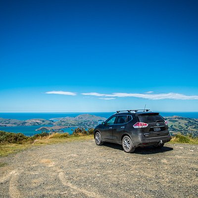 Harbour and Otago Peninsula View - Dunedin