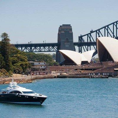 Quantum on Sydney Harbour
