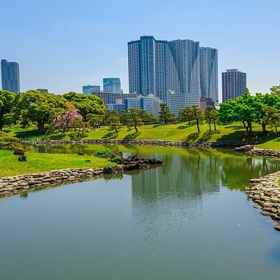 Hama Rikyu Gardens are the perfect place to take a nature break in Tokyo. Located near Tokyo Bay and just a short walk away from Shiodome Station, there is always something to see in these vast gardens.