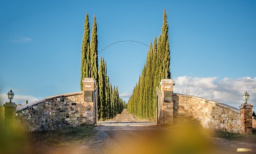 The entrace to biodynamic wines!