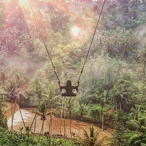 Bali jungle swing at Bongkasa pertiwi.