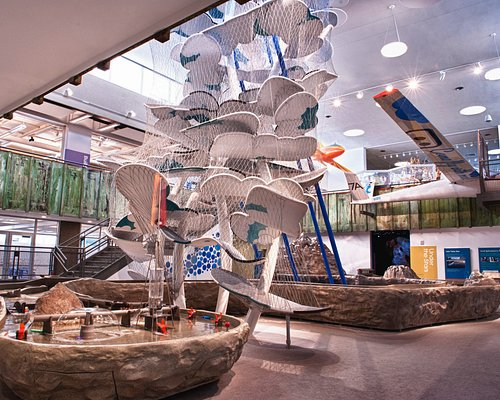 Truckee Connects and Cloud Climber exhibits in the main atrium at The Discovery.