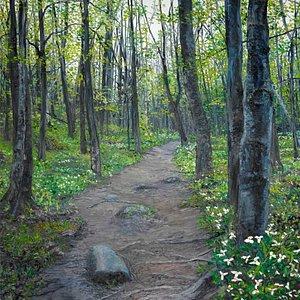 Trillium Trail - one of Debra's best masterpieces