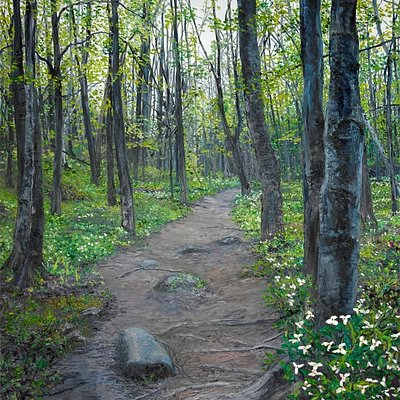 Trillium Trail - one of Debra's best masterpieces